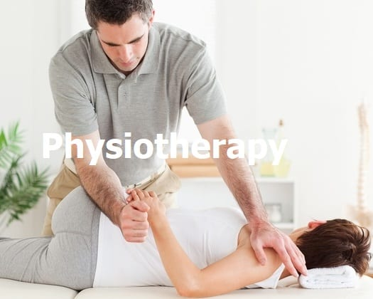 Physiotherapy, Physiotherapist